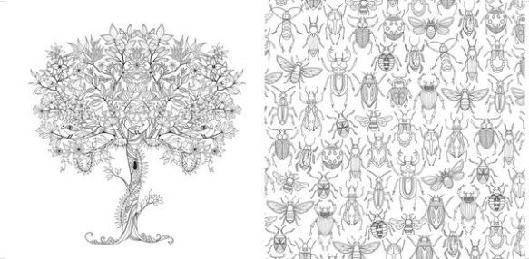 amazon coloring books for adults secret garden coloring books for adults digidame